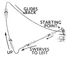 Boomerang Diagram